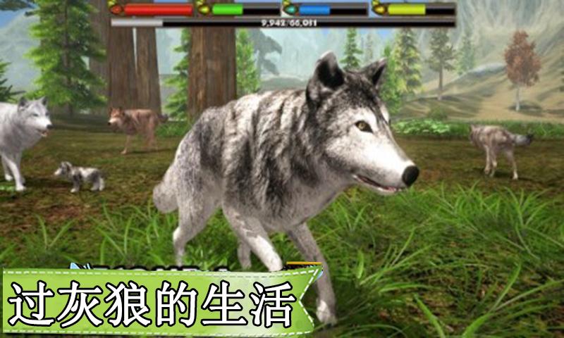 动物王国-灰狼模拟生存